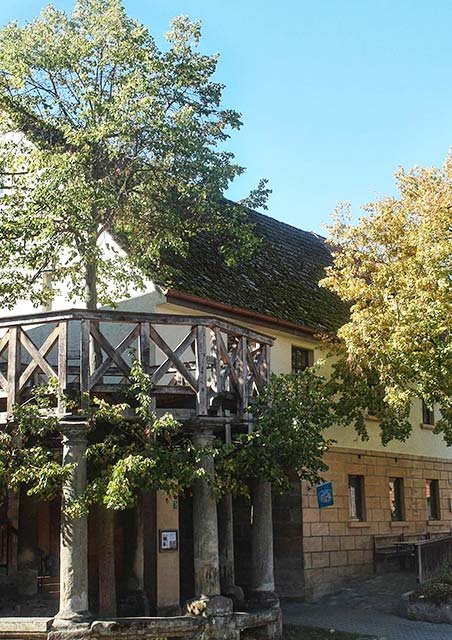 Tanzlinde Langenstadt