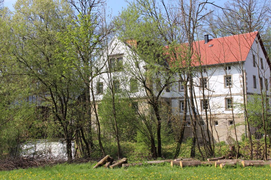 Die Bruckmühle hinter den Bäumen