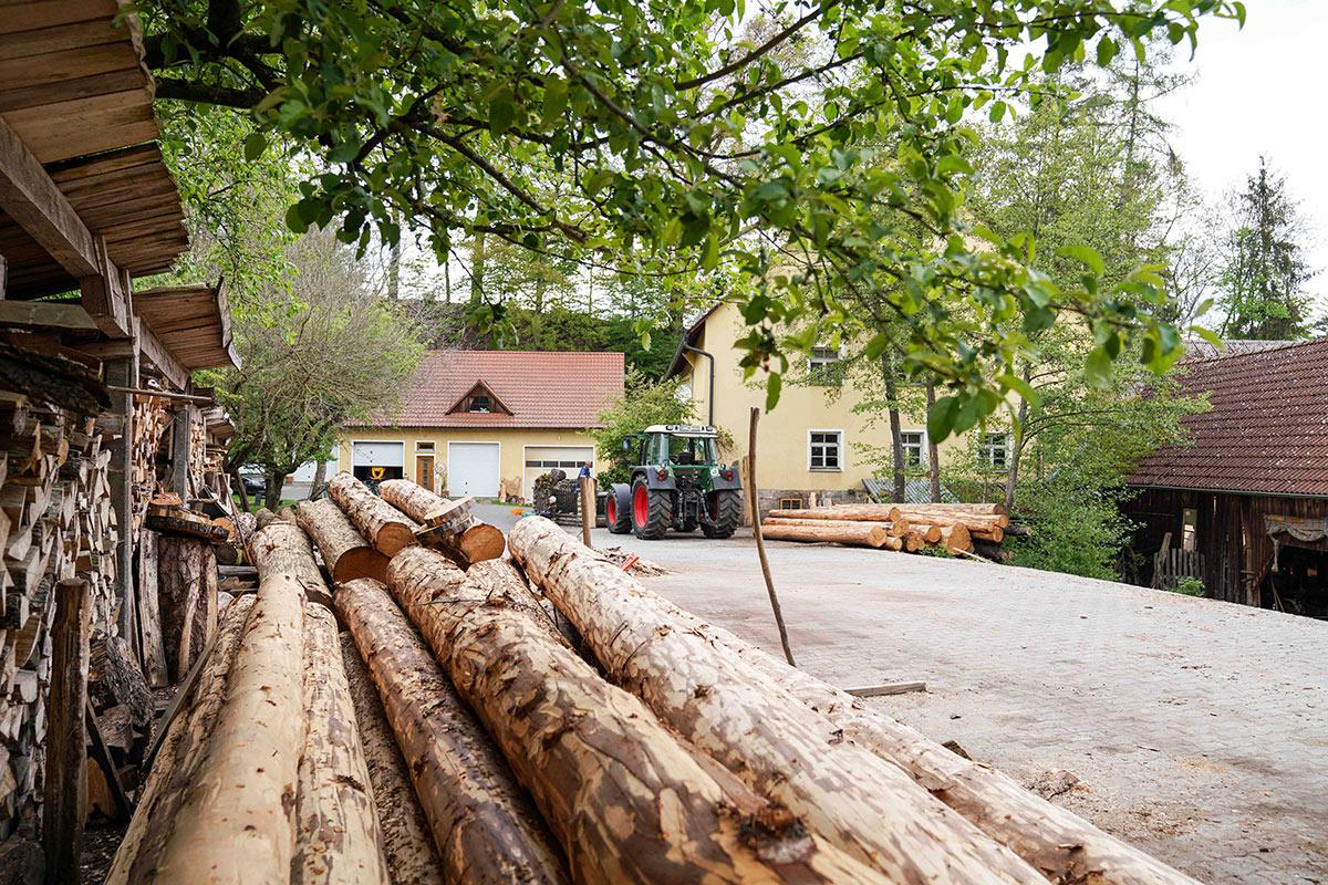 Der Holzlagerplatz der Hammermühle